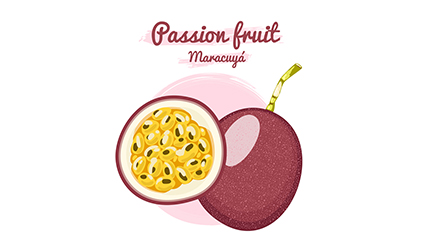 Vecteur de conception de fruit de la passion frais