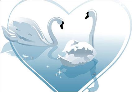 cygne coeur